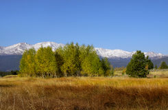 Scenic autumn landscape in colorado Royalty Free Stock Photo