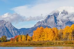 Autumn Scenic in the Tetons Royalty Free Stock Image