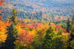 Scenic autumn landscape Stock Images