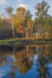 Scenic Autumn Landscape At Pearl Lake In Lisbon, New Hampshire Stock Image