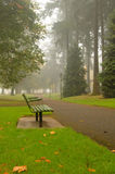 Scenic Autumn Park. Park in fall with fog in background and fallen leaves royalty free stock photo
