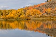 Scenic Autumn Reflection Stock Photos