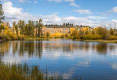 Scenic Autumn Reflection. A scenic autumn reflection landscape in Grand Teton National Park Wyoming Stock Photo