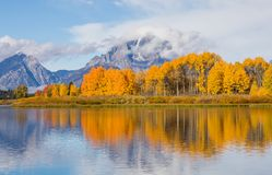 Teton Autumn Reflection Landscape Stock Image