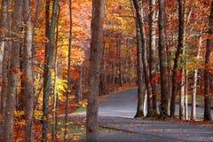 Scenic autumn road Stock Photography