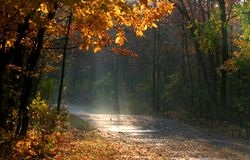 Scenic Autumn Time Royalty Free Stock Image