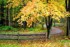 Scenic Autumn Walk Way Royalty Free Stock Photography