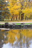 Scenic autumnal park with yellow trees near lake, reflection in Royalty Free Stock Image