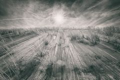 Bright Sun Over Sand Dune Ridge , Dynamic Black and White. Scenic Baltic Sea sand dunes in northern Poland, Europe royalty free stock photo
