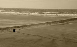 Scenic beach. Sepia view of deserted ocean beach stock images
