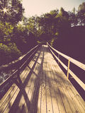 Scenic and beautiful tourism trail in the woods near river . Vin Royalty Free Stock Image