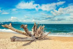 Scenic beautiful view of Nha Trang beach stock photography