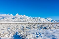 The scenic beauty of Grand Teton National Park stock photography
