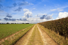 Scenic bridleway Royalty Free Stock Photography