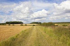 Scenic bridleway and woodland Stock Image