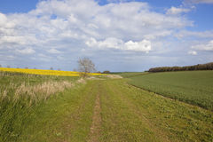 Scenic bridleway in the yorkshire wolds Stock Photos