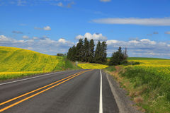 Scenic byway in Palouse Royalty Free Stock Photo