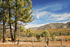 Scenic Byway, Southern California Stock Images