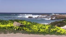 Scenic California Coast stock video footage