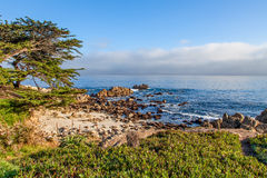Scenic California Coast Royalty Free Stock Photo