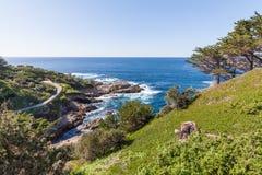 Scenic California Coast Landscape Stock Image