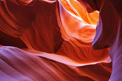 Scenic canyon Antelope Stock Images