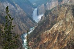 Artist Point Water Fall in Yellowstone royalty free stock photography