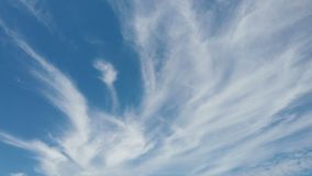 Scenic cirrus lenticular clouds in time lapse with awesome movement. Scenic cirrus lenticular clouds in time lapse with awesome white filaments of clouds and stock video footage