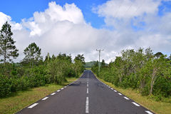 Scenic clean quiet tranquil road in rural or outskirt area with green trees and blue sky stock image