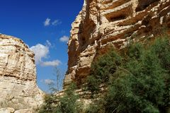 Scenic cliffs of Ein Avdat Ein Ovdat gorge in Israel Royalty Free Stock Image