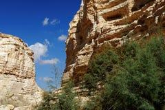 Scenic cliffs of Ein Avdat Ein Ovdat gorge in Israel. Scenic cliffs of Ein Avdat Ein Ovdat gorge in Negev desert in Israel Royalty Free Stock Image