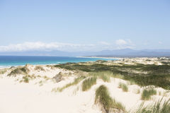 Scenic coast Bay of Fires Tasmania, Australia Royalty Free Stock Photography