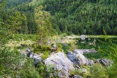 Scenic coast of Vorderer Gosausee lake, Austria Stock Images