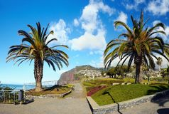 Madeira, South Coast, Camara de Lobos, Portugal. Scenic coastal garden at Camara de Lobos - fishing village on the South coast. Madeira Island, Portugal.  Europe Stock Images