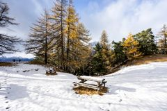 Scenic cold winter landscape with snow and trees and bench Royalty Free Stock Photos