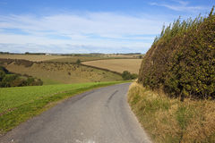Scenic country road Stock Photography