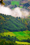 Scenic countryside. Aerial view of forest and green countryside fields, Tibet Royalty Free Stock Photo