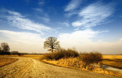 Scenic countryside landscape Royalty Free Stock Image