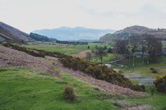Scenic countryside landscape at a sheep farm in Lake District of Englan stock images