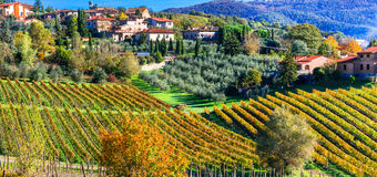 Scenic countryside with vineyards in autumn colors. Tuscany, Bea Royalty Free Stock Images