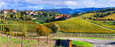 Scenic countryside with vineyards in autumn colors. Tuscany, Ita Stock Photo