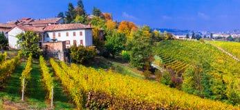 Scenic countryside with vineyards. Autumn scenery. Piedmont -vin Stock Photo