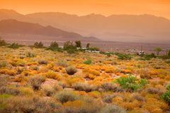 Scenic desert landscape Royalty Free Stock Photo