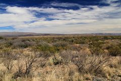 Scenic Desert Landscape Royalty Free Stock Photography