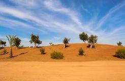 Scenic desert landscape Stock Images
