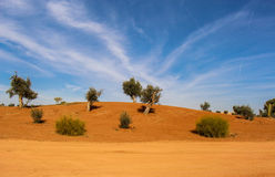 Scenic desert landscape Royalty Free Stock Photos