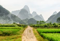 Scenic dirt road through green rice fields and karst mountains royalty free stock photos