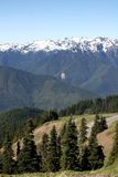 Scenic Drive. A view driving through the Olympic national park in Washington State stock image