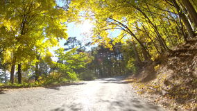 Scenic drive along the forest highlands, GoPro