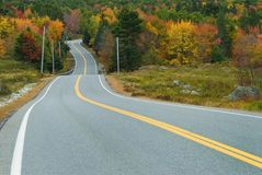 Scenic drive through fall forest. Waving highway surrounded by the fall forest Royalty Free Stock Image